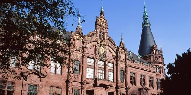 The-University-Heidelberg